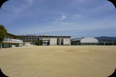運動場からの全景